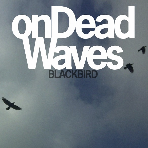 Blackbird_Packshot
